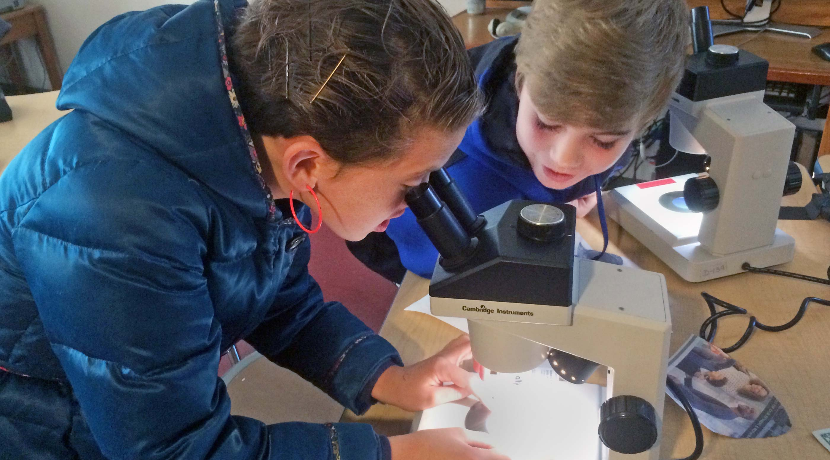 Older students view images in a microscope