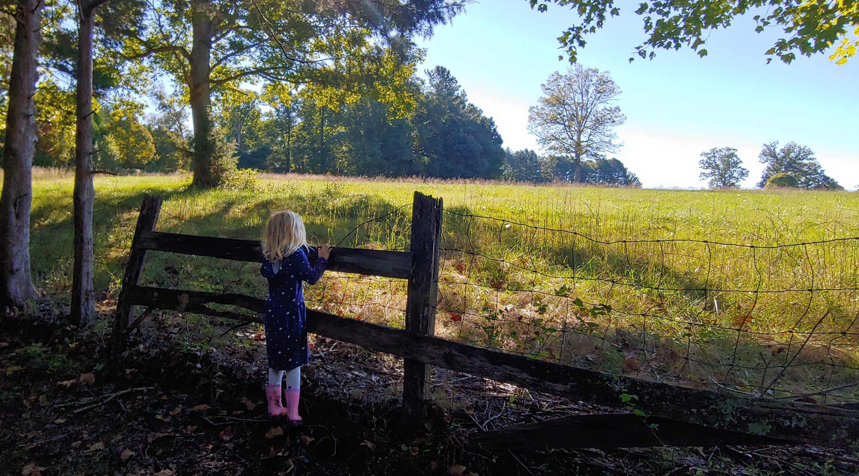 A young girl looks across a fence into a field