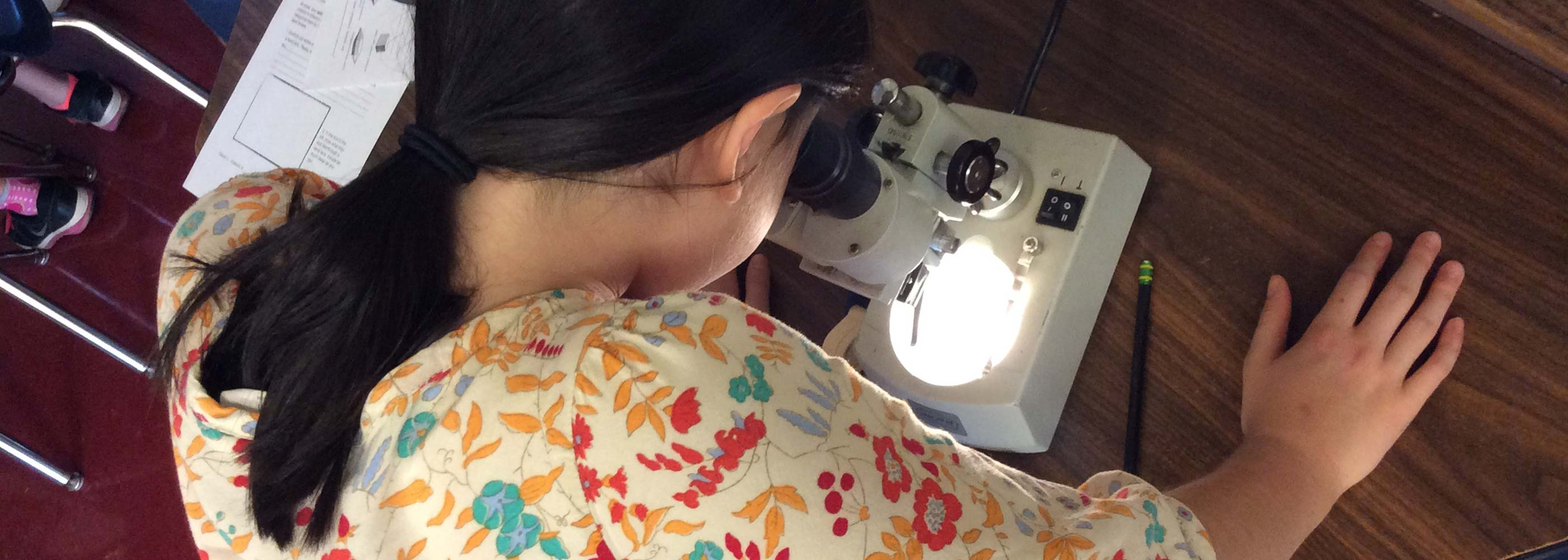 A student peers into a microscope
